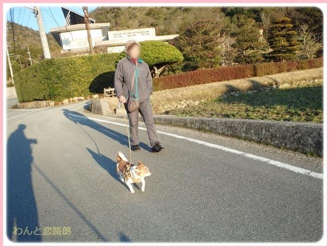 f:id:yasukazu01:20150201202532j:image