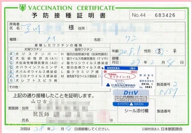 f:id:yasukazu01:20150204204635j:image