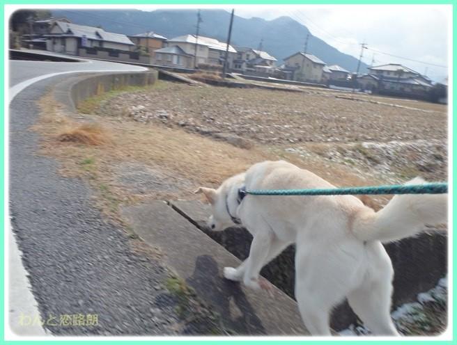 f:id:yasukazu01:20150206202132j:image