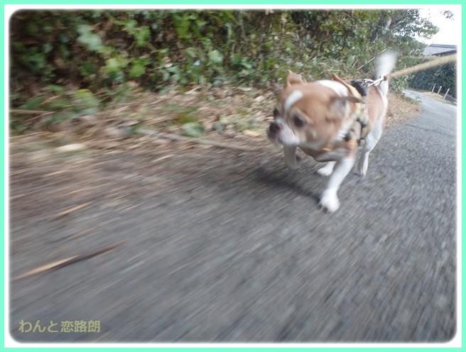 f:id:yasukazu01:20150208200816j:image