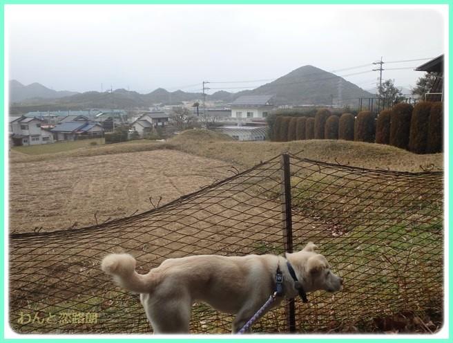 f:id:yasukazu01:20150208202124j:image