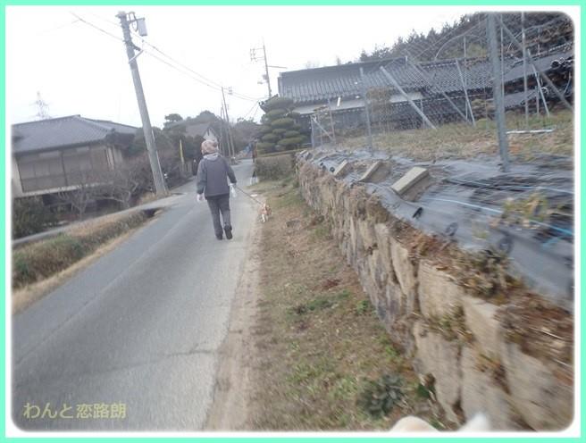 f:id:yasukazu01:20150208203506j:image