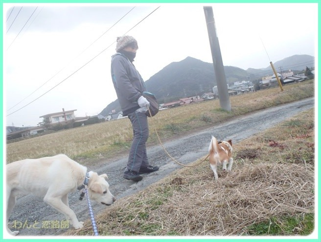 f:id:yasukazu01:20150208203720j:image
