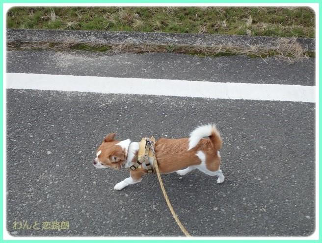 f:id:yasukazu01:20150209213726j:image