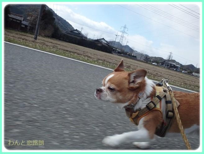 f:id:yasukazu01:20150209213855j:image