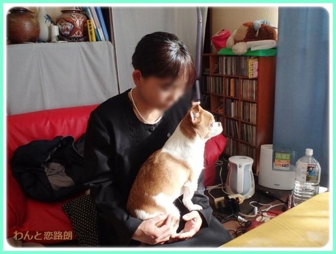 f:id:yasukazu01:20150209214115j:image