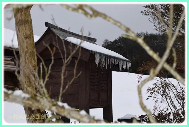 f:id:yasukazu01:20150210202231j:image