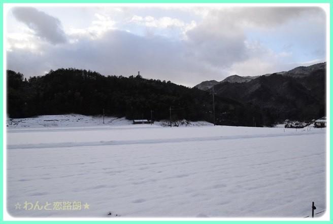f:id:yasukazu01:20150210203135j:image