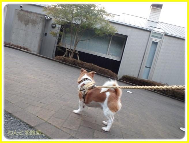 f:id:yasukazu01:20150218213204j:image