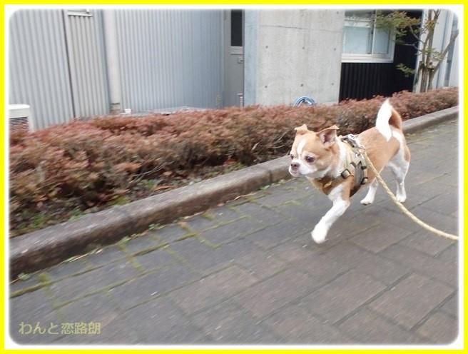 f:id:yasukazu01:20150218213510j:image