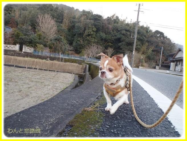 f:id:yasukazu01:20150218215625j:image