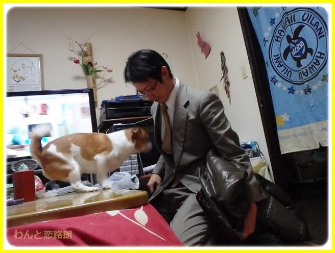 f:id:yasukazu01:20150219214341j:image