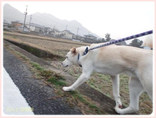 f:id:yasukazu01:20150223213032j:image