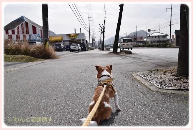 f:id:yasukazu01:20150226230631j:image