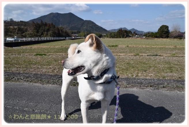 f:id:yasukazu01:20150228223542j:image