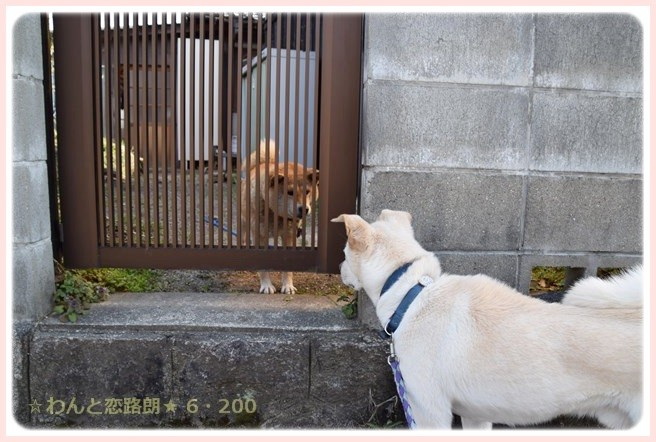f:id:yasukazu01:20150228224417j:image
