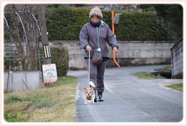 f:id:yasukazu01:20150301203151j:image