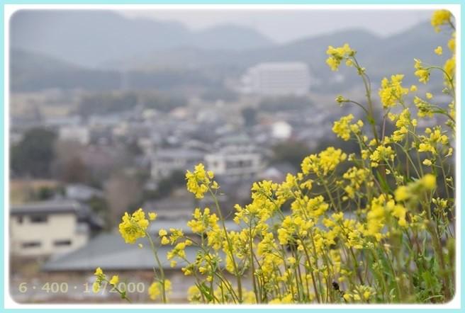 f:id:yasukazu01:20150303210140j:image