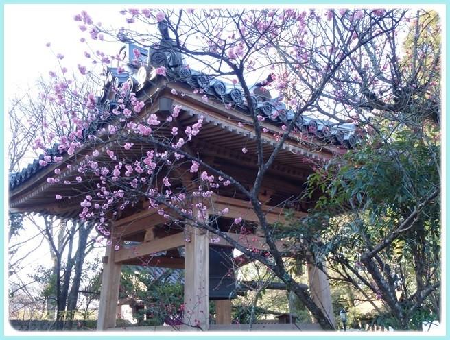 f:id:yasukazu01:20150309220959j:image