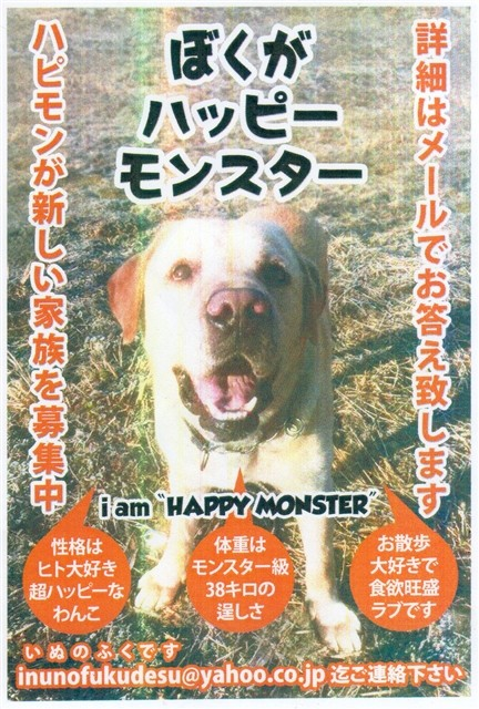 f:id:yasukazu01:20150310211616j:image