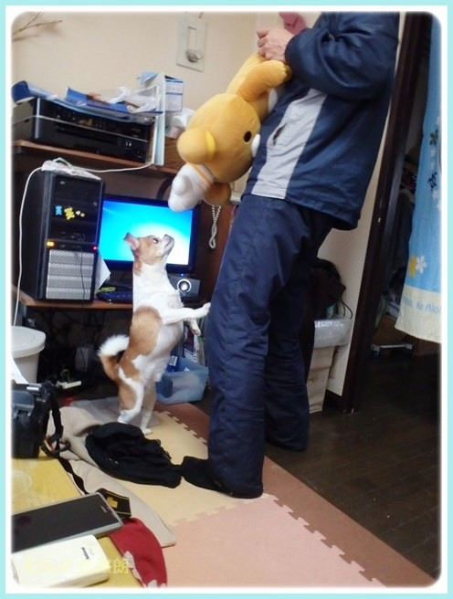 f:id:yasukazu01:20150311215910j:image