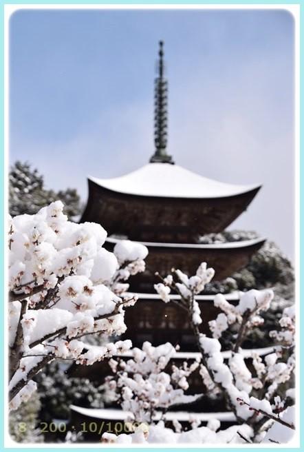 f:id:yasukazu01:20150312224812j:image
