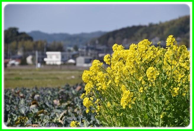 f:id:yasukazu01:20150314200951j:image