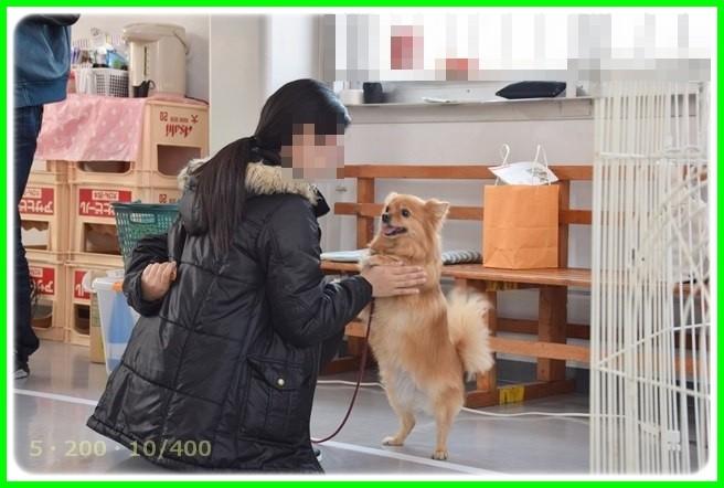 f:id:yasukazu01:20150314201537j:image