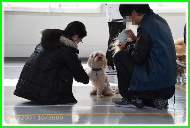 f:id:yasukazu01:20150314201757j:image