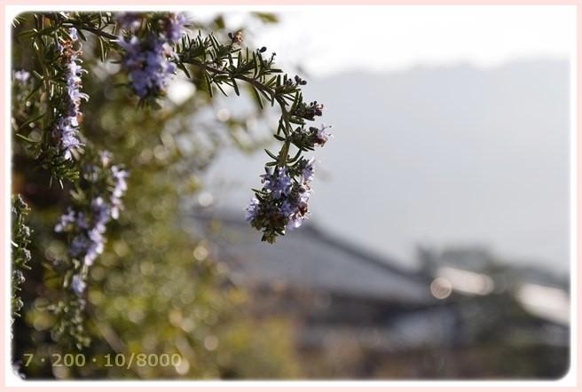 f:id:yasukazu01:20150317193606j:image