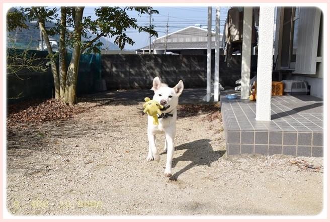 f:id:yasukazu01:20150317195937j:image