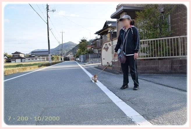f:id:yasukazu01:20150318225655j:image