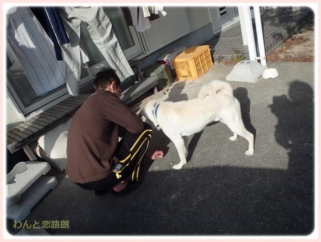 f:id:yasukazu01:20150319210133j:image