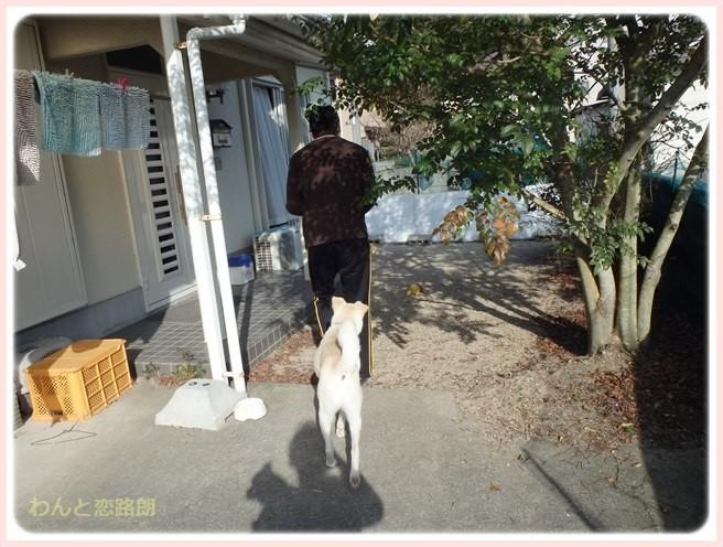 f:id:yasukazu01:20150319211306j:image