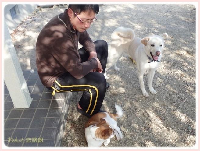f:id:yasukazu01:20150320230026j:image