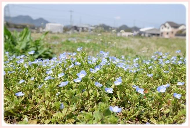 f:id:yasukazu01:20150321205816j:image