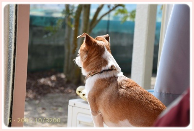 f:id:yasukazu01:20150321211343j:image