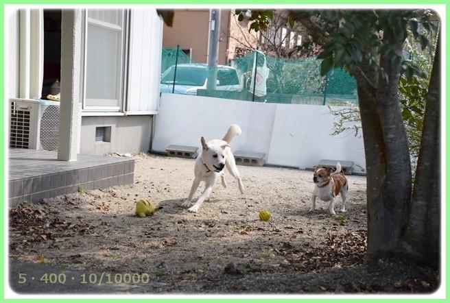 f:id:yasukazu01:20150325212459j:image