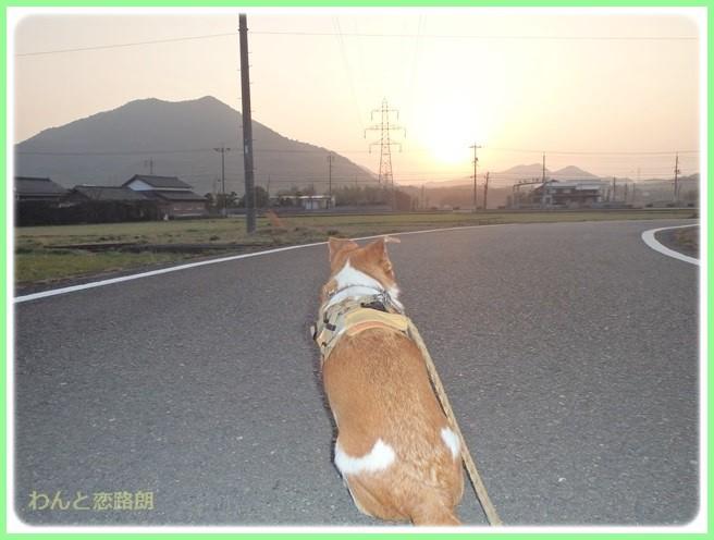 f:id:yasukazu01:20150326232114j:image