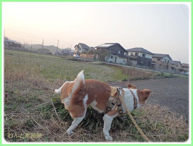 f:id:yasukazu01:20150326232332j:image
