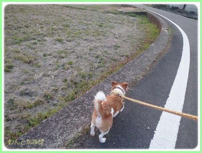 f:id:yasukazu01:20150326232417j:image