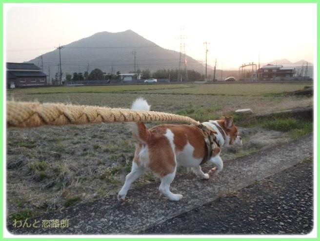 f:id:yasukazu01:20150326232453j:image