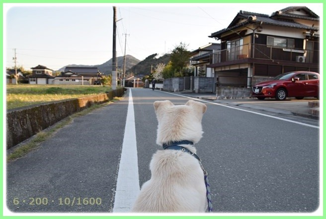 f:id:yasukazu01:20150327230616j:image