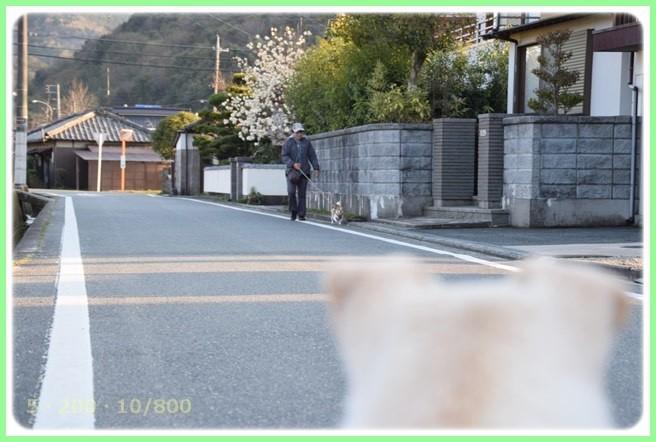f:id:yasukazu01:20150327230719j:image