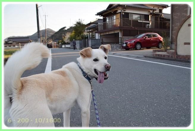 f:id:yasukazu01:20150327230748j:image