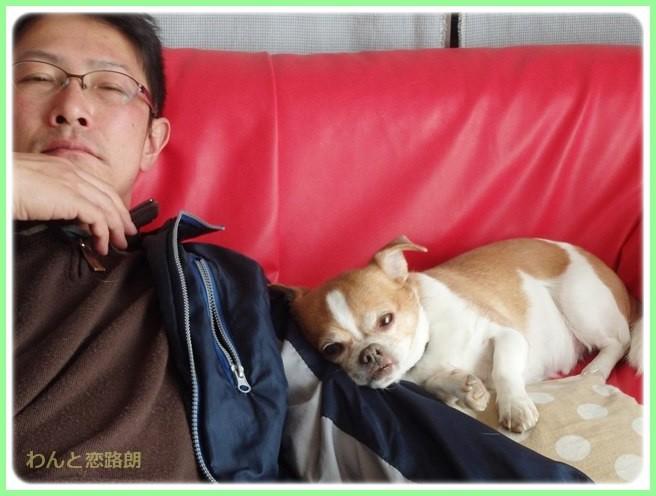 f:id:yasukazu01:20150328230853j:image