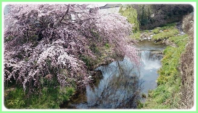 f:id:yasukazu01:20150329210026j:image