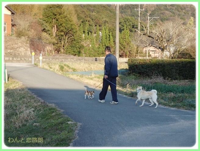 f:id:yasukazu01:20150401225805j:image