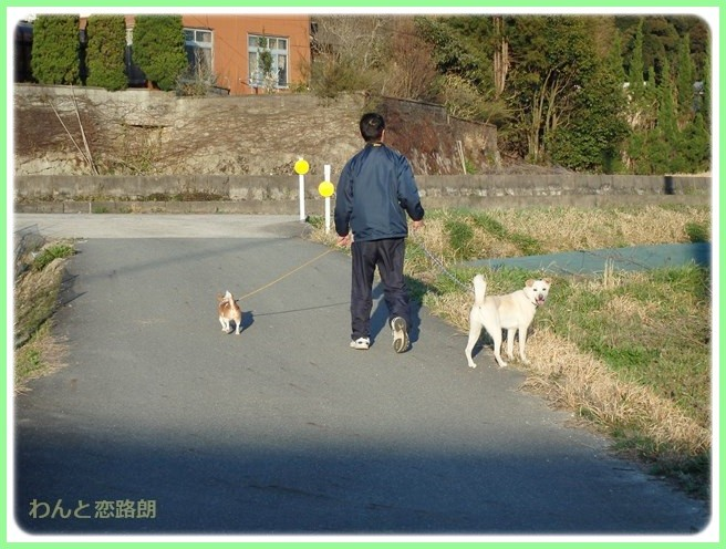 f:id:yasukazu01:20150401225914j:image