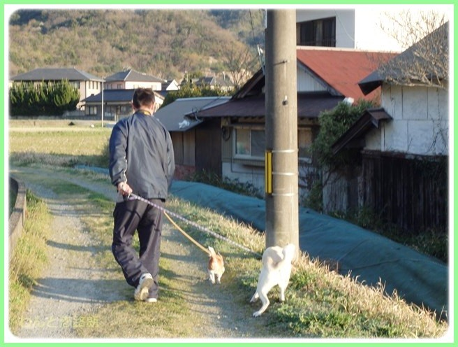 f:id:yasukazu01:20150401230211j:image
